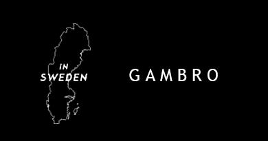 Gambro S.P.A.