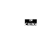 IN CHINA SHANGHAI JINSHAN GAS