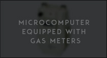 Microcomputer equipped with gas meters